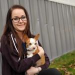 The Veterinary Consultation