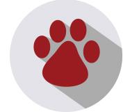 paw print woodbine animal clinic
