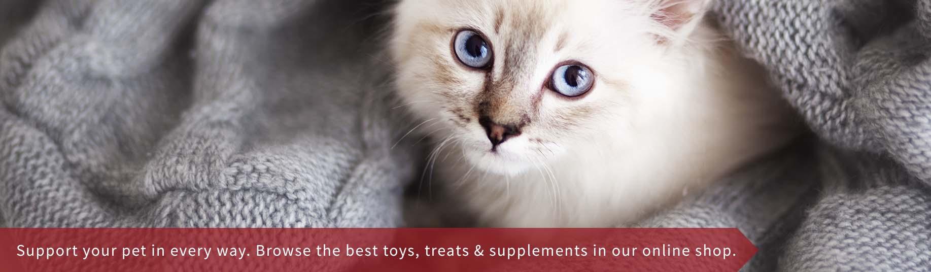 Woodbine Animal Clinic East Toronto Vet Clinic Cat Slider