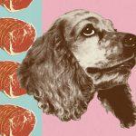 artistic photo of dog dreaming of steak