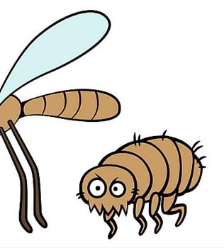Pesky Pests: Part 3 of 3– The Irritating