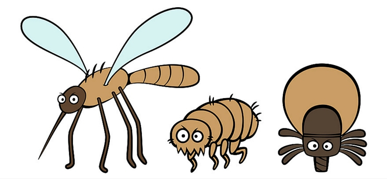 Pesky Pests: The Ick, the Itch and the Irritating
