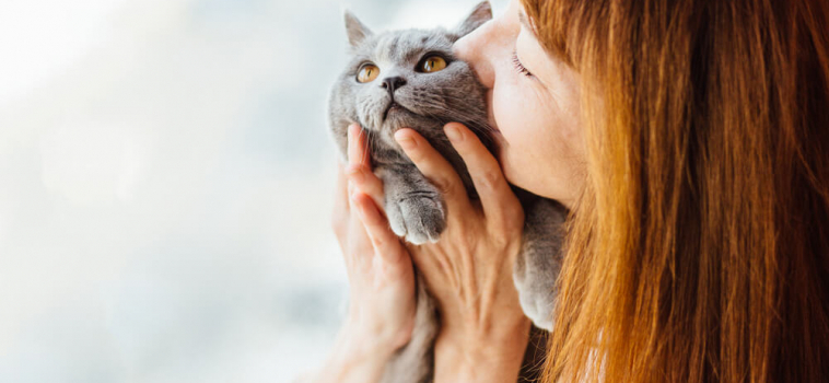 General Care Tips For Your Cat